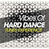 Vibes of Hard Dance Tunes Experience de Various Artists