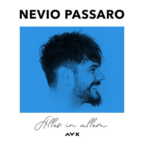 Alles in allem (Acoustic) by Nevio Passaro