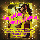 One Nation Under A Groove - (The Big Funk Collection) by Various Artists