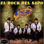 El Rock del Sapo by Contacto Norte