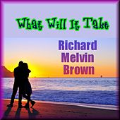 What Will It Take by Richard Melvin Brown