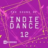 The Sound Of Indie Dance, Vol. 12 - EP de Various Artists