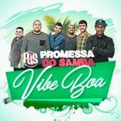 Vibe Boa (Ao Vivo) de Promessa do Samba