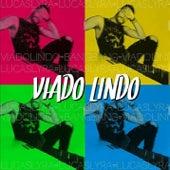Viado Lindo by Lucas Lyra