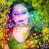 Brief Peace Through Storms de Thunderstorm Sleep