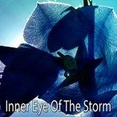 Inner Eye Of The Storm de Thunderstorm Sleep
