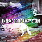 Embrace Of The Angry Storm by Rain Sounds Sleep