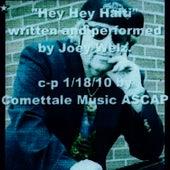 Hey Hey Haiti (Help Is On The Way) by Joey Welz