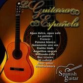 Spanish Guitar, Guitarra Española 1 by Guitarra Flamenca: Domi de Ángeles