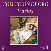 Peregrino De Amor by Various Artists