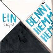 Ein í Leyni by Benni Hemm Hemm