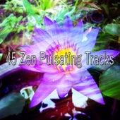 45 Zen Pulsating Tracks von Massage Therapy Music