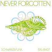 Never Forgotten by Schwarz and Funk