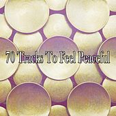 70 Tracks To Feel Peaceful de Zen Meditation and Natural White Noise and New Age Deep Massage