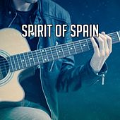 Spirit Of Spain by Instrumental