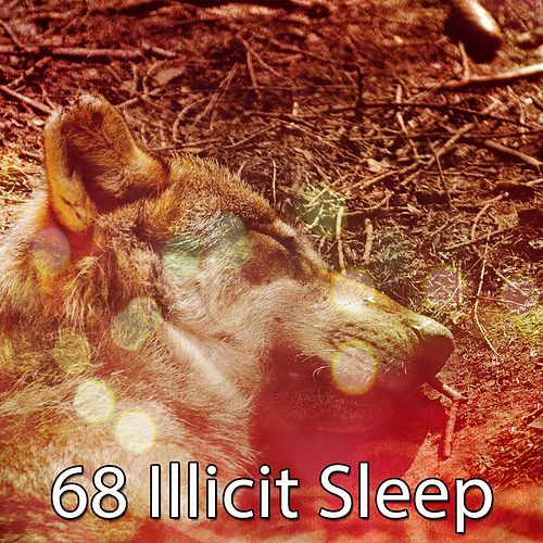 68 Illicit Sleep von Best Relaxing SPA Music
