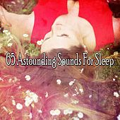 65 Astounding Sounds For Sleep von Best Relaxing SPA Music