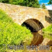 73 Therapeutic Healing Sounds de Meditación Música Ambiente