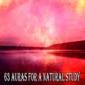 63 Auras For A Natural Study von Massage Therapy Music