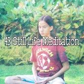 43 Still Life Meditation von Massage Therapy Music