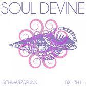 Soul Devine by Schwarz and Funk