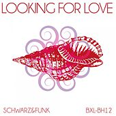 Looking for Love by Schwarz and Funk