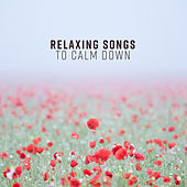 Relaxing Songs to Calm Down by The Relaxation