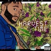 Harvest Time by Ranger