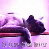 61 Sleep Dream Repeat by Baby Sleep Sleep