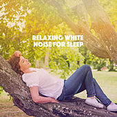 Relaxing White Noise for Sleep by Various Artists
