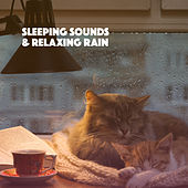 Sleeping Sounds & Relaxing Rain de Various Artists