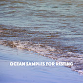 Ocean Samples for Resting de Various Artists