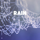Rain by Various Artists