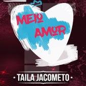 Meio Amor de Taila Jacometo