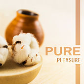 Pure Pleasure - Hypnotic Angelic Voices, Sounds of Nature, Spa Water, Body Relaxation, Healing Massage, Soothing Therapy by Spa Music Zone