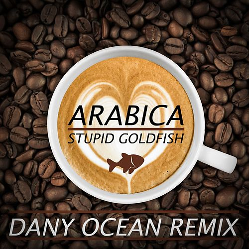 Arabica (Dany Ocean Remix) by Stupid Goldfish