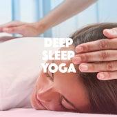 Deep Sleep Yoga von Various Artists