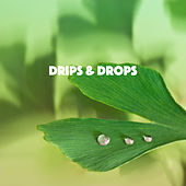Drips & Drops by Various Artists