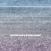 Naptime Rain & Nature Sounds de Various Artists