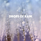 Drops of Rain by Various Artists