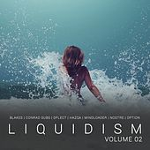 Liquidism, Vol. 2 by Various Artists
