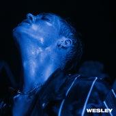 Wesley by Teesy