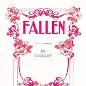 Fallen by Bo Diddley