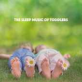 The Sleep Music of Toddlers by Various Artists