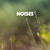 Noises by Various Artists