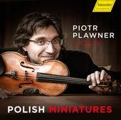 Polish Miniatures de Piotr Plawner