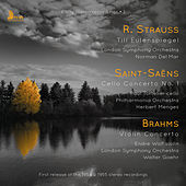Strauss, Saint-Saëns & Brahms: Orchestral Works by Various Artists