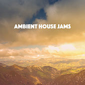 Ambient House Jams by Various Artists