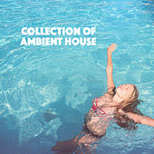 Collection of Ambient House by Various Artists