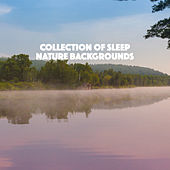 Collection of Sleep Nature Backgrounds de Various Artists